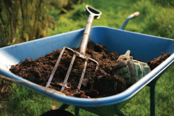 Чем удобрять почву осенью