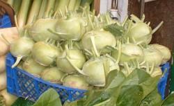 Выращиваем и убираем вовремя капусту кольраби