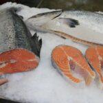 Чем полезна рыба? Доставка рыбы