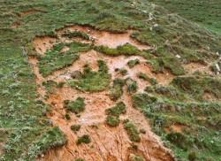 Борьба с ветровой эрозией почвы