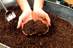Компостирование почвы