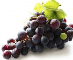 Виноградная диагностика