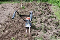 Подготовка почвы к посадке на огороде