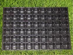 Выращивание рассады в кассетах